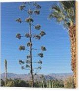 Desert Willow Golf Resort Wood Print