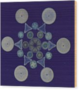 Diatom Arrangement Wood Print