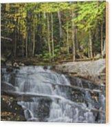 Discovery Falls Wood Print