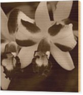 Double Orchid Wood Print