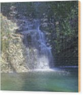 Dripping Springs Falls Wood Print