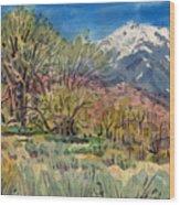 East Of The Sierra Nevadas Wood Print