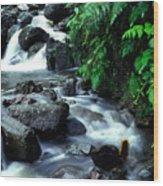 El Yunque Waterfall Wood Print