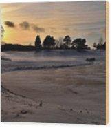 Ellis Park - Cedar Rapids, Ia Wood Print
