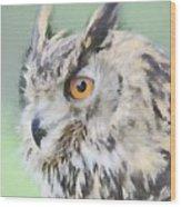 Eurasian Eagle Owl Wood Print