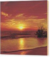 Evening Beach Wood Print