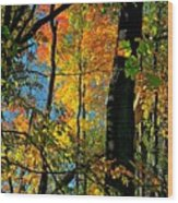 Fall Fire Works Wood Print