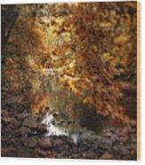 Fall Reflected Wood Print