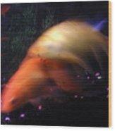 Fire Comet In Aquarium Wood Print