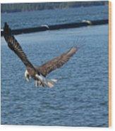 Flying Eagle. Wood Print