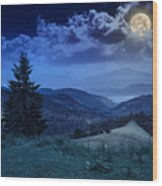 Forest On A Steep Mountain Slope Wood Print