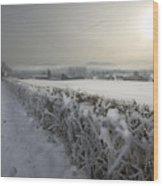Frozen Britain Wood Print by Angel  Tarantella