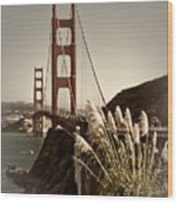 Golden Gate Bridge Wood Print by Melanie Viola