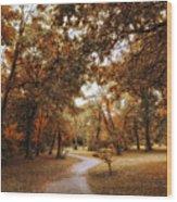 Golden Path Wood Print