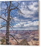 Grand Canyon National Park - South Rim Wood Print