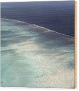 Great Barrier Reef In Australia Wood Print