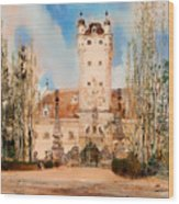 Greillenstein Castle Wood Print