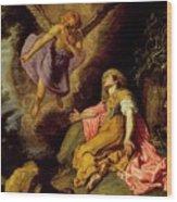 Hagar And The Angel Wood Print