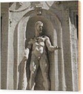 Hercules Wood Print