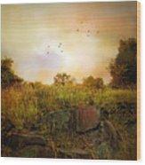 Hilltop Meadow Wood Print