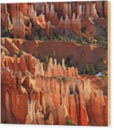 Hoodoos Of Sunset Point In Bryce Canyon Wood Print