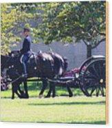 Horse And Caisson Team At Arlington Cemetery Wood Print