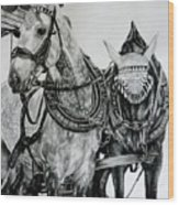 2 Horses Of Rothenburg 2000usd Wood Print