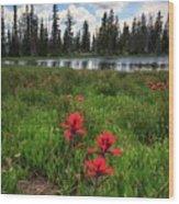 Ibantik Lake Trail Wood Print