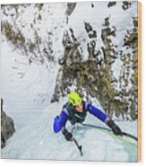 Ice Climbers On A Route Called Professor Falls Rated Wi4 In Banf Wood Print