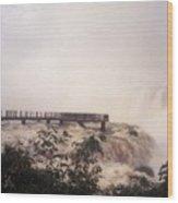 Iguazu Falls Wood Print