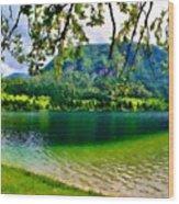 Images Landscape Wood Print