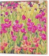 Impressionist Floral Xvi Wood Print