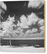 Infrared Landscape Wood Print