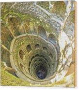 Initiation Well Sintra Wood Print