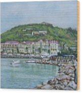 Isle At St Martin St Maarten Wood Print