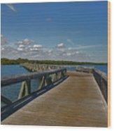 2- J.d. Macarthur State Park Wood Print
