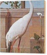 kb Marks Henry-Indian Crane Bullfinch and Thrush Henry Stacy Marks Wood Print