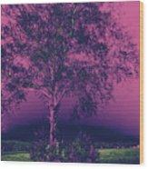 Koivu Wood Print