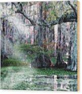 Lake Martin La Wood Print