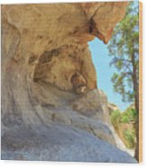 Landscape In Joshua Tree National Park Wood Print