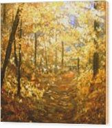 Lanterns Of Gold Wood Print
