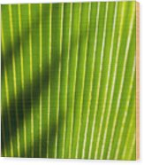 Leaf Close-up Wood Print