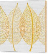 Leaves Wood Print by Frank Tschakert