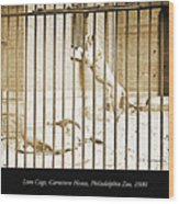 Lion Cage, Carnivore House, Philadelphia Zoo, C. 1900 Wood Print