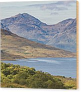 Loch Arklet And The Arrochar Alps Wood Print
