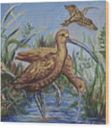 Longbilled Curlews Wood Print
