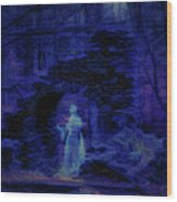 Madame Sherris Castle Ruins Wood Print