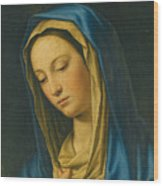 Madonna At Prayer Wood Print