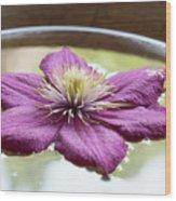 Clematis Flower On Water Wood Print