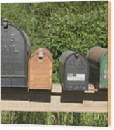 Mail Boxes  Wood Print